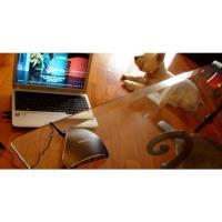 Vibe-Tribe Ninja Dark Silver Głośnik wibracyjny RMS 3W (szary)